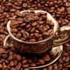 Где растёт самый дорогой  кофе в мире?